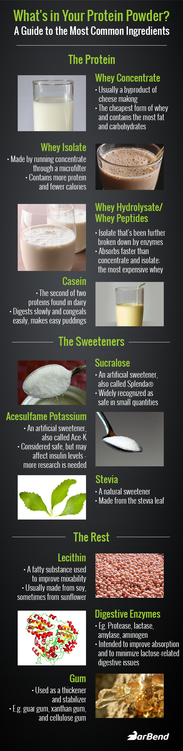 Protein Powder Infographic amino acids