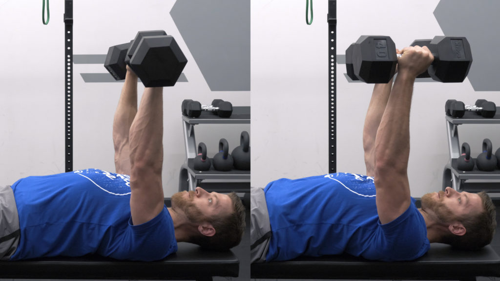 Dumbbell Bench Press Variations