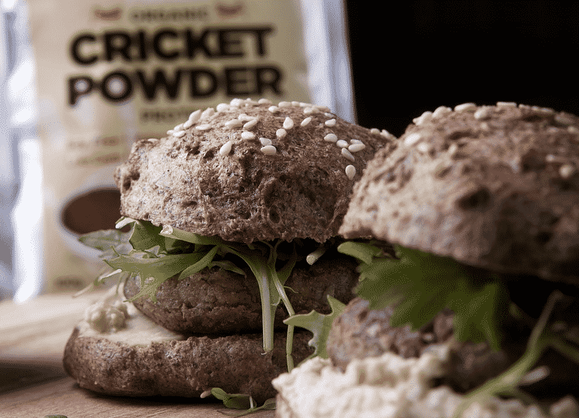 cricket flour burger