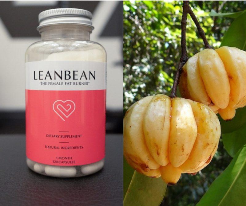 Leanbean and konjac