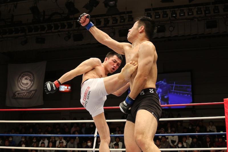 mma kickboxing kick free