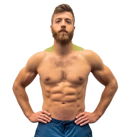 Muscle Bodybuilding Com Bane Traps Wwwgenialfotocom