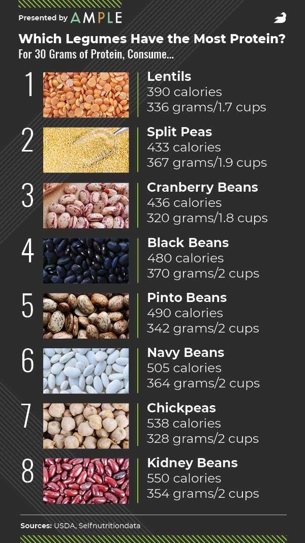 highest protein legumes