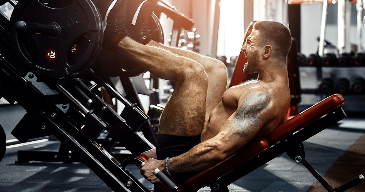 Leg Press Guide Muscles Worked How To Program And More