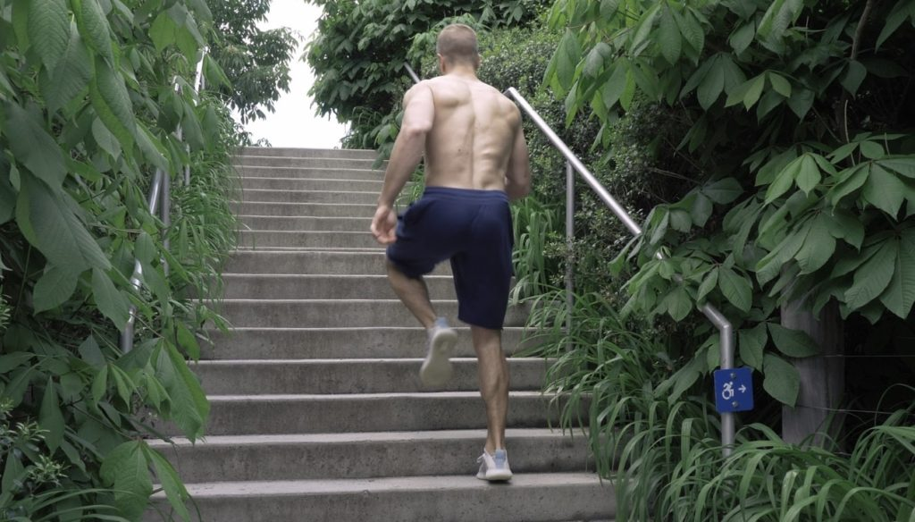 Adidas Pureboost Trainer Performance