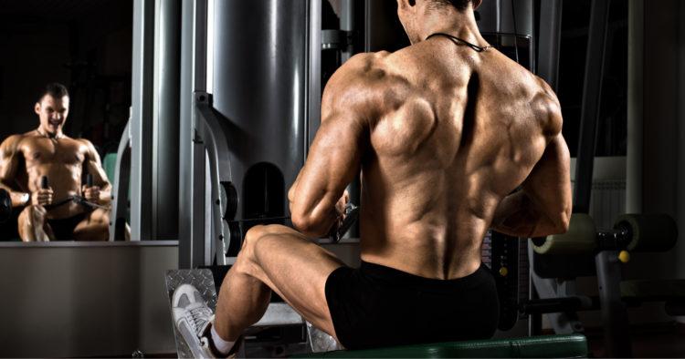 Best Upper Back Exercises