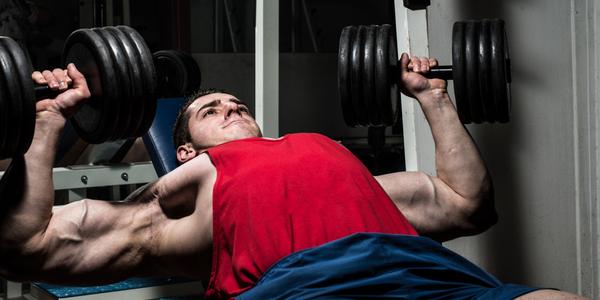 Bench Press Pec Muscle MassBench Press Pec Muscle Mass