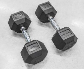Rogue Fitness Dumbbells