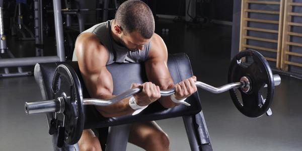Biceps Preacher Curls