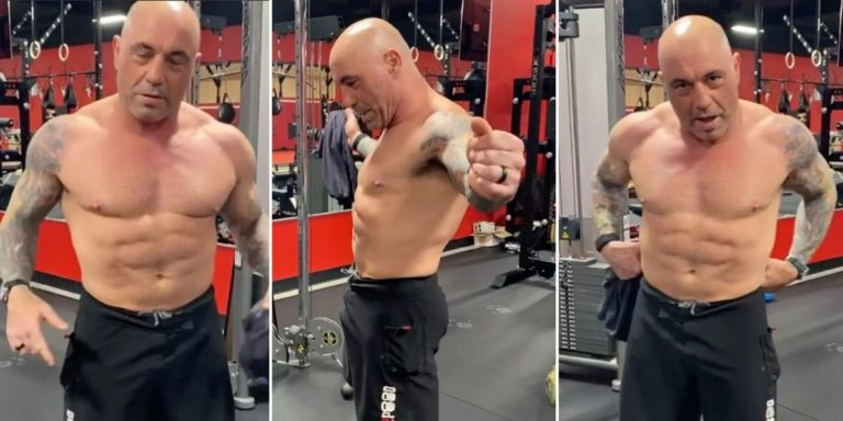 joe rogan carnivore diet