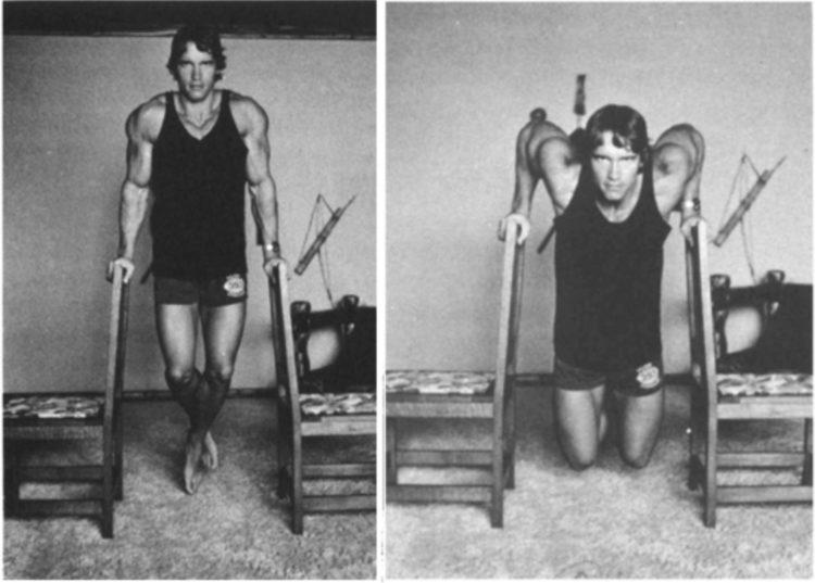 arnold schwarzenegger chair dips