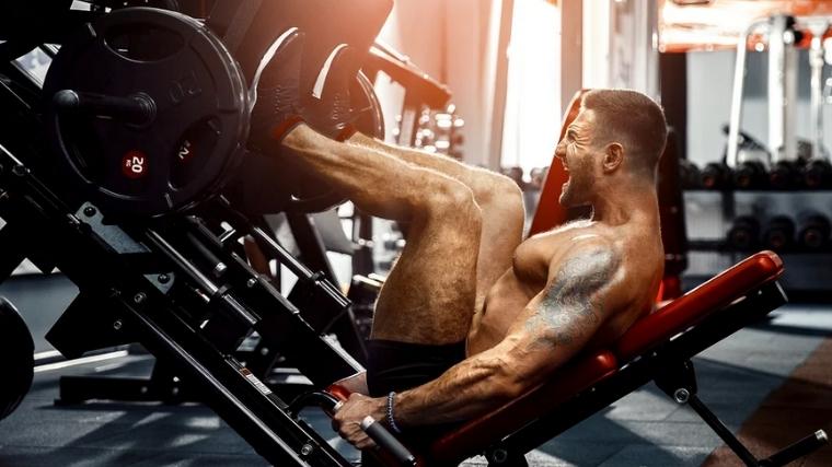 leg press best quad exercises
