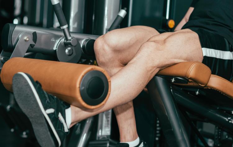 Single Leg Leg Extension