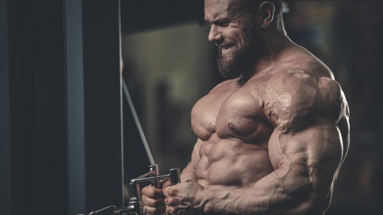 cable row bodybuilding