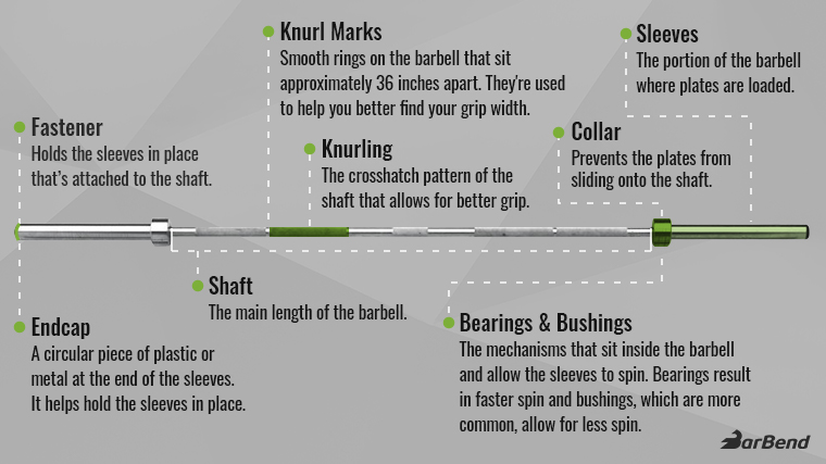 The Anatomy of a Barbell