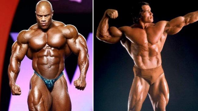 Best arms in bodybuilding