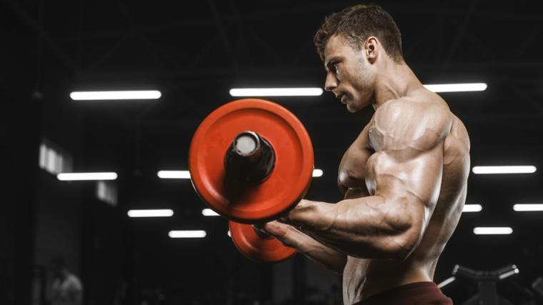 bodybuilder doing curl