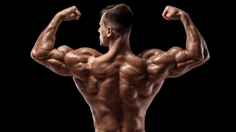 the man bends his back and biceps